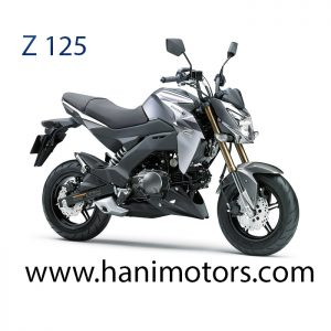 z1251